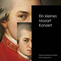 Ein kleines Mozartkonzert